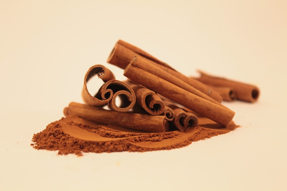 cinnamon diy lip plumper